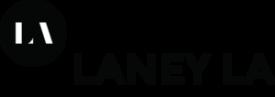 lan ey logo